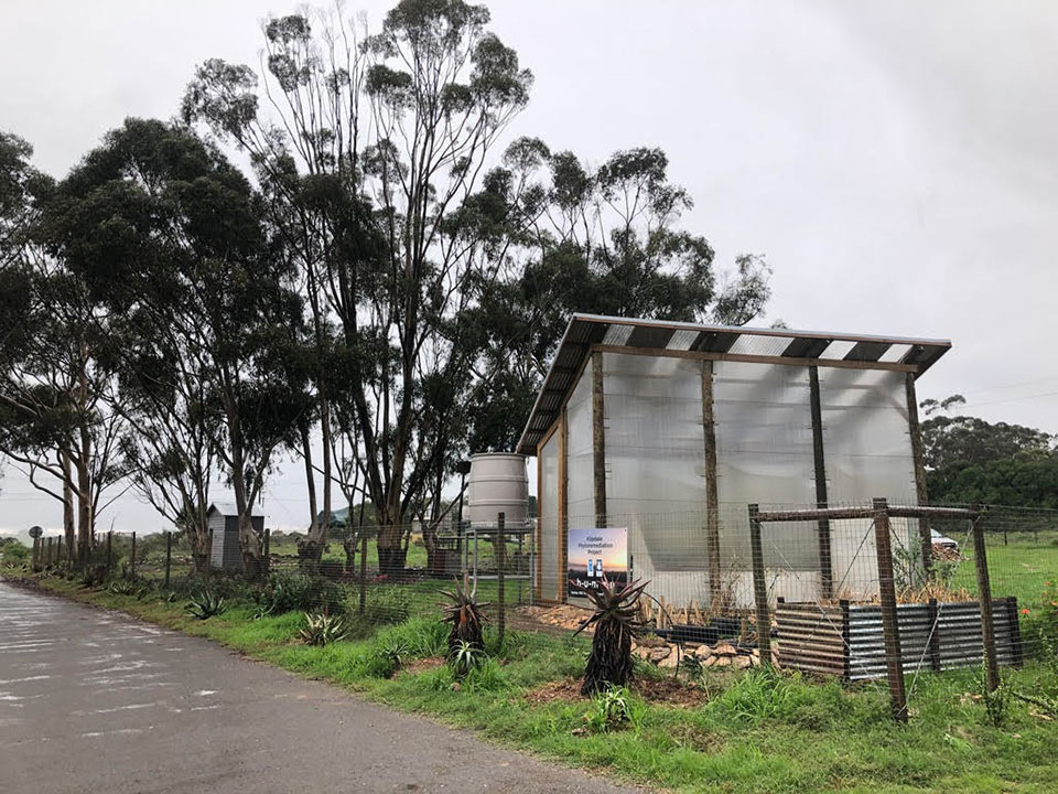 New greenhouse for the Klipdale Groundwater Phytoremediation Project